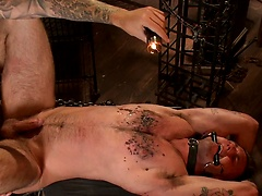 Slave #401 submits his entire body to the whims of Mr. Wilde, Added: 2015-08-25 by Bound Gods