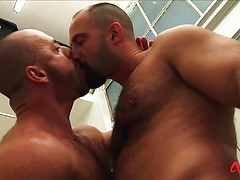 Butch Hairy Ballbusters, Added: 2016-11-25 by Alpha Male Fuckers