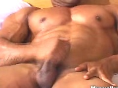 Ricardo jerking off dick, Added: 2011-11-12 by Muscle Hunks