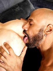 Saul Leinad and Mickey Carpathio, Added: 2017-04-10 by Alpha Male Fuckers